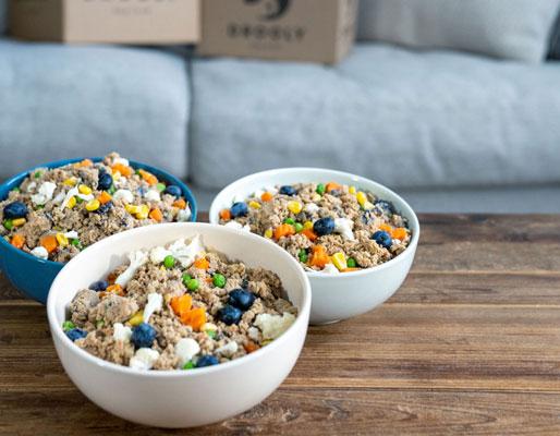 dr food bowls